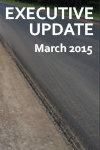 Executive_Update_bug_March_2015
