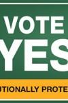 Vote-YES-bug